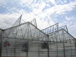 ventilation fans for greenhouses nexus greenhouse systems natural ventilation roof vents