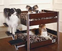 Doggie Bunk Beds I Waste So Much Money Lazybonezz Metropolitan Pet Bunk Bed