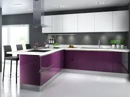 cuisine aubergine et gris cuisine aubergine et gris cuisine color e violet cuisineplus