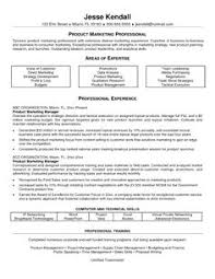 Manager Sample Resume Example Of Resume For Job Application In Malaysia Resumescvweb