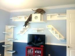 cat wall furniture cat wall furniture cat furniture wall steps russthompson me