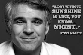 Black Comedian Meme - wisdom of comedian steve martin quotes and memes thechive com thechive