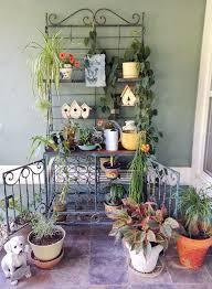 Okra Container Gardening Organic Container Gardening In San Antonio Burgundy Okra Home