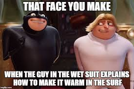 Despicable Meme - gru times 2 imgflip