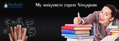 My assignment expert Singapore   Students Assignment Help