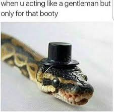 Funny Booty Memes - acting like gentleman but only for that booty