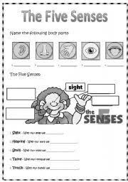 english teaching worksheets sense organs life skills