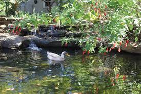 garden conservancy tour takes you into four private gardens