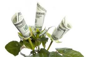 money flowers ascensus to pay out 100 mln dividend to owners including flowers