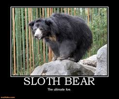 sloth demotivational poster page