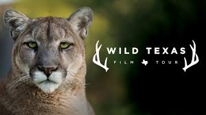 Texas wildlife tours images Wild texas film tour tobin center for the performing arts san jpg