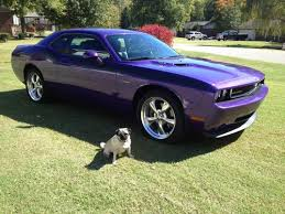 plum dodge challenger for sale sell used 2010 dodge challenger r t plum purple