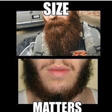 Beard Memes - 44 best beard memes humor images on pinterest hilarious memes