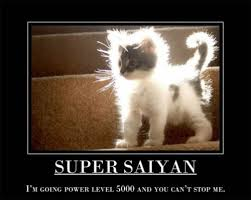 Uplifting Memes - 25 inspirational cat motivators smosh