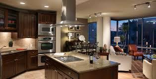 Luxury Apartments Design - luxury apartments kitchen home design ideas