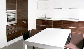 Kitchen Design  Contemporary Custom Kitchen Wood Veneers Modern - Kitchen cabinet veneers