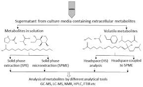 metabolites free full text extracellular microbial