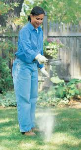 183 best lawn and lawncare images on pinterest lawn care garden