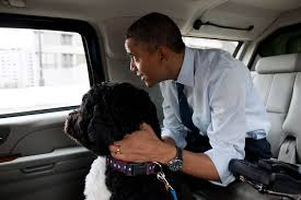 Obama Dog Meme - image 288723 obama the eater of dogs know your meme