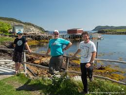 Do Newfoundlands Shed Year Round by South East Bight Newfoundland U2014an Unexpected Outport