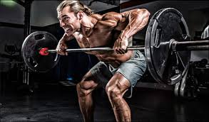 Bench Barbell Row Bent Over Barbell Row Alternative To The Seated Cable Row