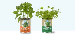 10 best indoor herb gardens in 2017 indoor gardens for growing herbs