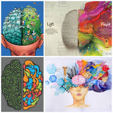 The Anatomy Of The Human Brain Two Brains In One Head The Story Of The Split Brain Phenomenon