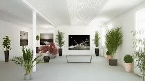 interior plants officialkod com