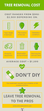 the average cost of tree removal don u0027t get stumped on costs tips