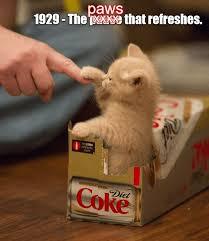Funny Coke Meme - coke slogans in history redo lolcats lol cat memes funny