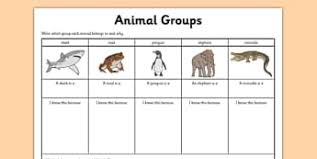 variation and classification resources ks2 science page 1