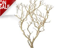 manzanita branches centerpieces manzanita branches from blooms and branches 10 to 7 ft