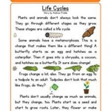 printables science worksheets 4th grade ronleyba worksheets