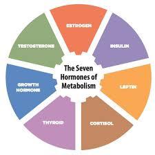 15 best the hormone reset diet images on pinterest detox