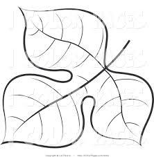 leaf templates to color 100 images best 25 leaf template