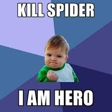 Hero Meme - kill spider i am hero create meme