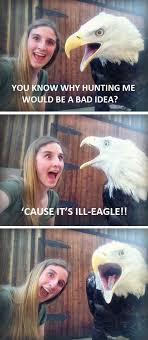 Meme Joke - bad joke bald eagle weknowmemes