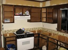 Replace Kitchen Cabinets by Kitchen Perfect Solution For Your Kitchen With Home Depot Cabinet