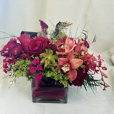 San Diego Flower Delivery Succulents Flower Delivery In San Diego Rainbow Flowers