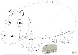 hippopotamus dot to dot free printable coloring pages
