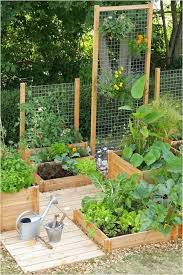 Garden Pictures Ideas Small Space Gardening Ideas Unique 30 Raised Garden Bed Ideas