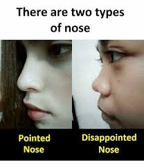 Nose Meme - there are two types of nose pointed nose disappointed nose