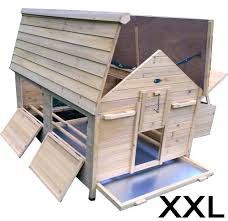 Fox Proof Rabbit Hutches Get Nelly Chicken House And Protect Chickens From Fox Attack