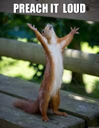 Preach Meme - preach it loud preacher squirrel quickmeme