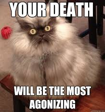 Colonel Meow Memes - your death will be the most agonizing colonel meow quickmeme