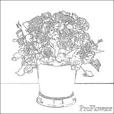 rose coloring pages for kids proflowers blog