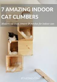 5 amazing indoor cat trees and perches styletails