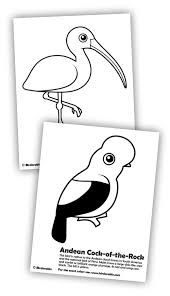 ibis andean rock coloring pages coloring pages
