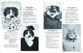 cat yearbook cat high the yearbook 9781452140230 terry deroy