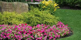 Tips For Curb Appeal - tips for adding curb appeal to rentals hermann london